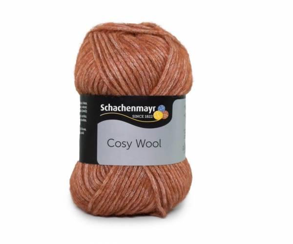 Schachenmayr Cosy Wool 0025 navajo