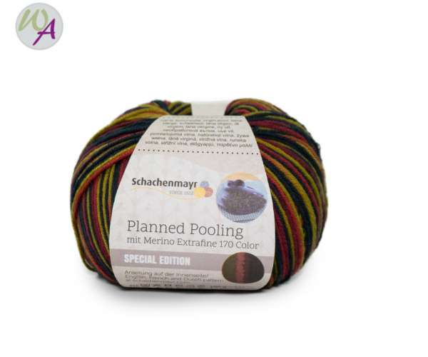 Planned Pooling Merino Extrafine 170 color Schachenmayr