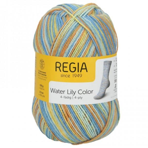 Regia 4-fädig color 100g
