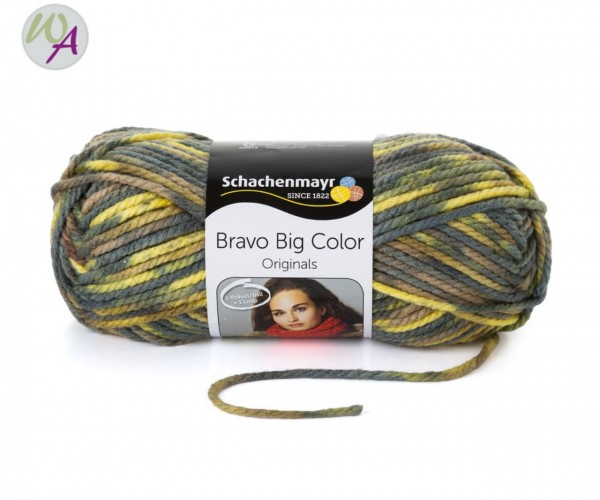 Schachenmayr Bravo Big Color Farbe 0086 nil color
